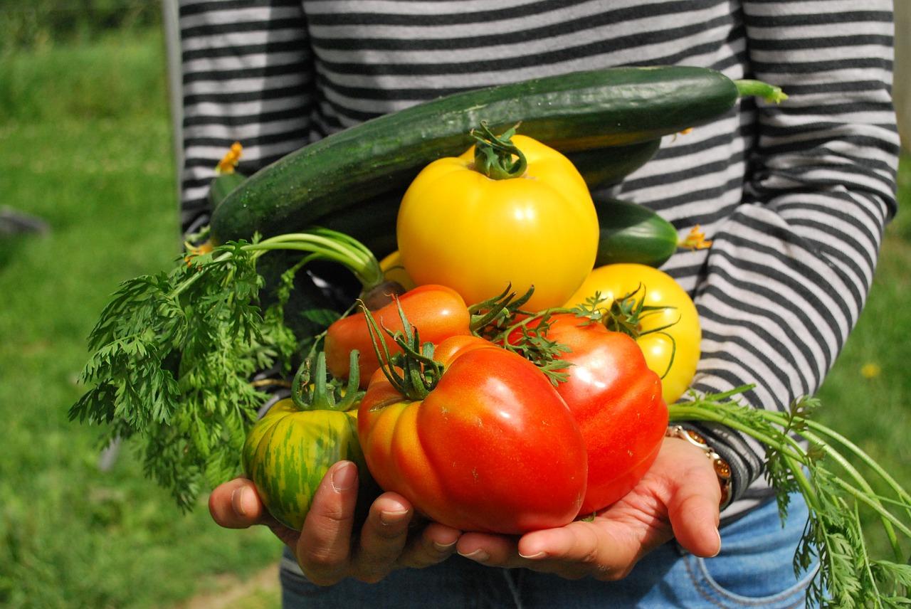 nuevo convenio manipulacion frutas hortalizas nominas